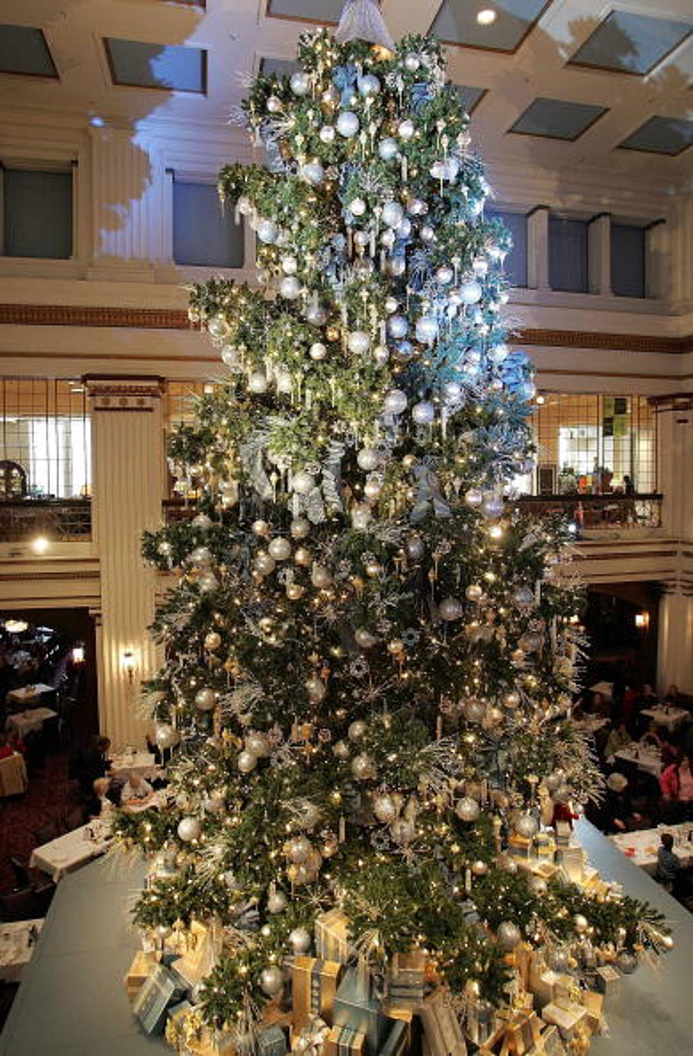 protesters yank lights down from chicago christmas tree video - Chicago Christmas Tree