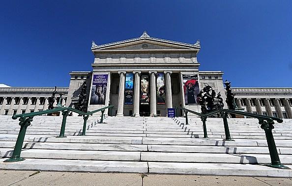 Chicago Field Museum's Terra Cotta warriors