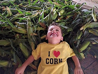 Top 12 Places to Get Sweet Corn In Northern Illinois For 2017